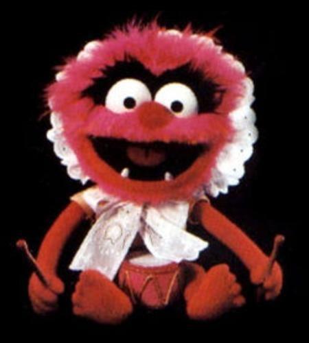 114 Best Animal Muppet Images On Pinterest