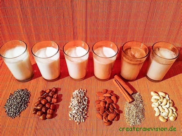 Die rohvegane Küche besticht durch vielfältige Möglichkeiten, die jedem Milchliebhaber eine pflanzliche, wohlschmeckende und gesunde Milchalternative bietet