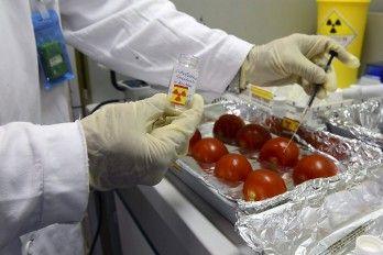 Energía Nuclear Contra El Fraude Y La Contaminación De Alimentos