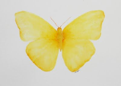 Water color Yellow butterfly.