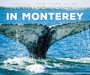 Anyone who has camped in Monterey County knows that every campsite in the region is enviable in one way or another.Find campsites here from See Monterey.