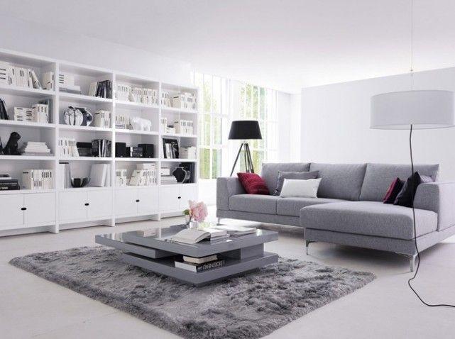 Salon gris blanc r novation maison pinterest for Mon salon design