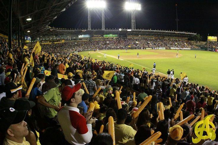 Tigres y Águilas inician este jueves la final del béisbol dominicano