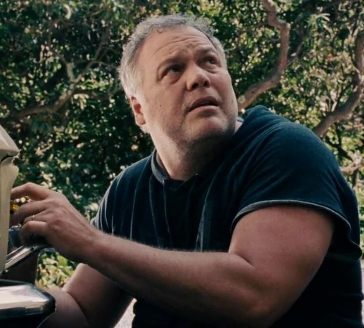 Vincent D'onofrio  (The Judge)  2014
