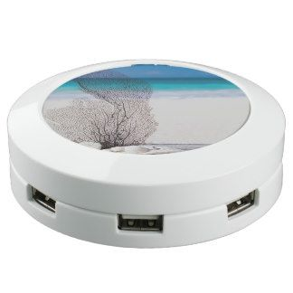 Tropical Beach Turquoise Water and Blue Sky USB Charging Station