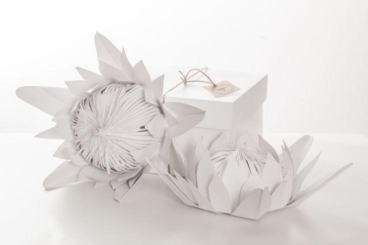 paper protea - www.bespokepaperworld.com