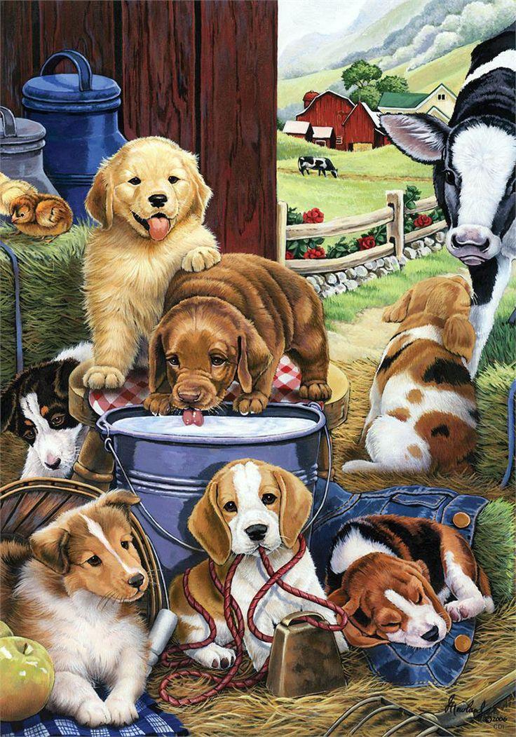 Картинки для рассказывания собака со щенятами