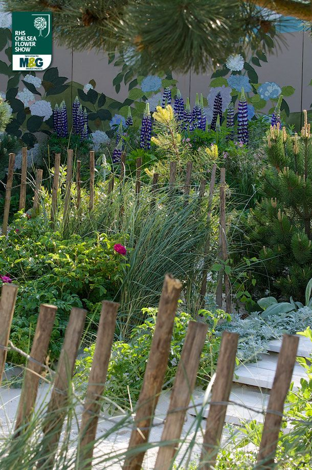 Garden Tour Fifty Shades Of Green: RHS Chelsea Flower Show