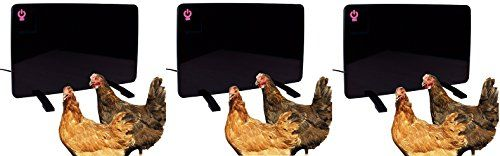 Cozy Products Safe Chicken Coop Pet Heater 200W Flat Panel Technology, One Size, Black (Pack of 3)