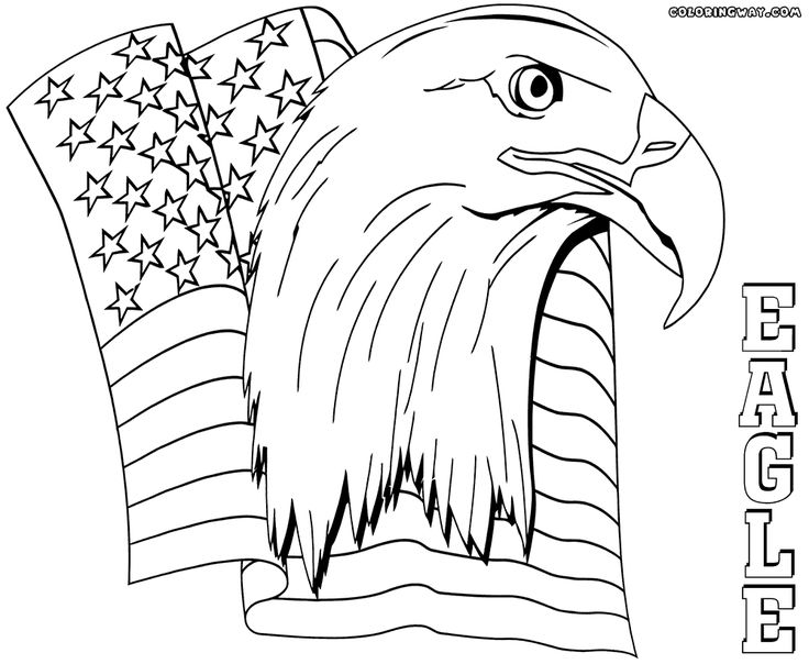 eagle coloring pages coloring pages to download and