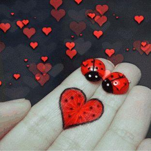 Lindas imagenes con movimiento de corazones de amor