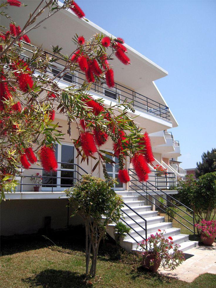 Ξενοδοχείο Σείριος - Πρέβεζα