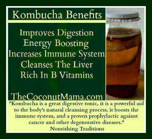 how to make new kombucha