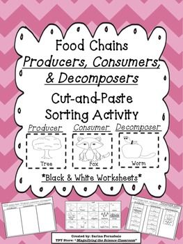 1000+ images about Food chain - producers and consumers on ...