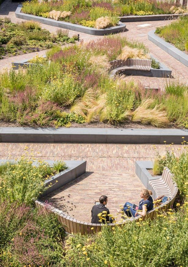 Delfland Water Authority Mecanoo Archinect Landscape Design Landscape Architecture Modern Landscaping