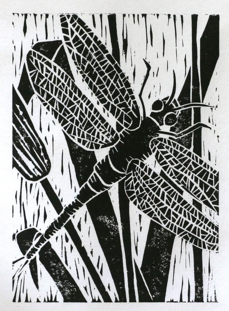 Dargonfly print 5x7 black original linocut insect art black. $16.00, via Etsy.