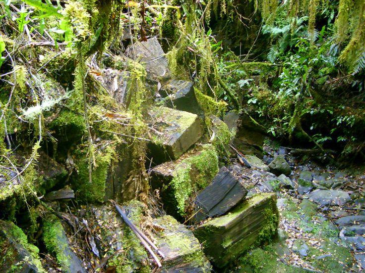 Mossy blocks.