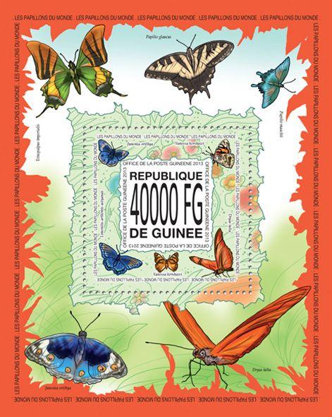 GU 13519 bButterflies, (Junonia orythia, Vanessa kershawi, Dryas iulia, Limenitis arthemis astyanax).