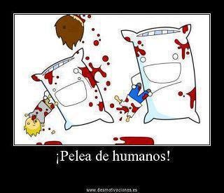 Pelea de Humanos!!!... :3 lol: Pillowfight, Pillows Fight, Laugh, Demotivational Posters, Funny Stuff, Humor, People Fight, Parallel Universe, Things