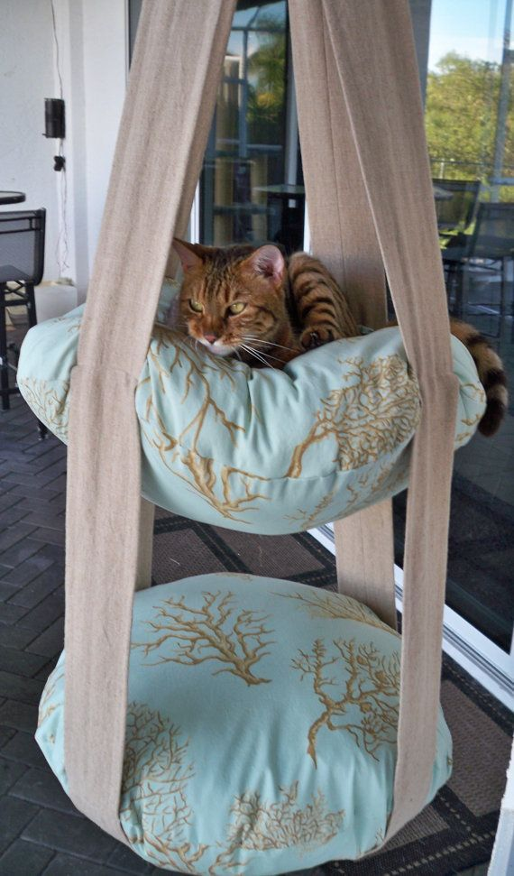 Art On Sun: 2 Level Hanging Cat Bed, Coral Print Kitty Cloud