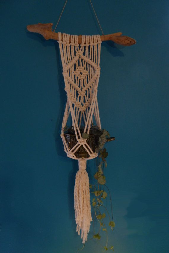 Gorgeous small macrame wall hanging plant hanger. Would love one of these in my office!