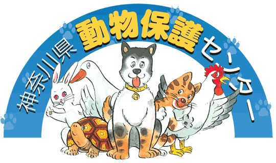 神奈川県動物保護センターのホームページ