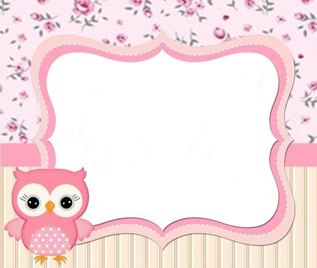 Coruja. Owl