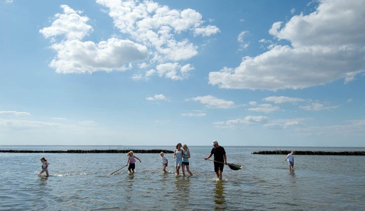 Explore the Wadden Sea - South West Denmark