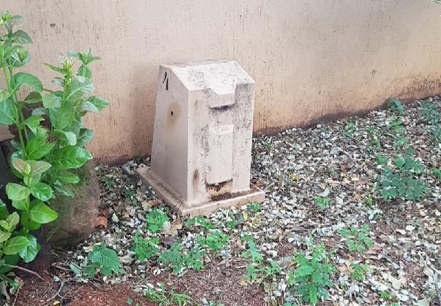 Bee Removal in Johannesburg , removed bees in  an electric box
