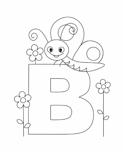 Letter B is for Butterfly!