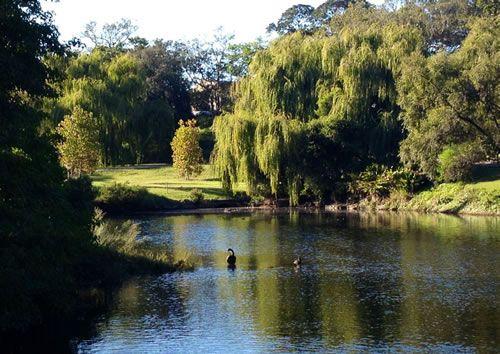 Centennial Park, Sydney - Top 10 city parks in the world