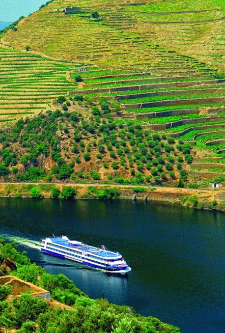 Douro valley with its #PortWines vineyards