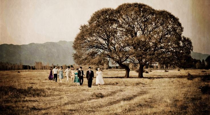 the wedding tree !
