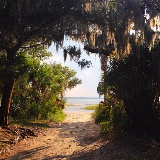 Beautiful Places In Florida To Stay: 51 Best Cumberland Island Images On Pinterest