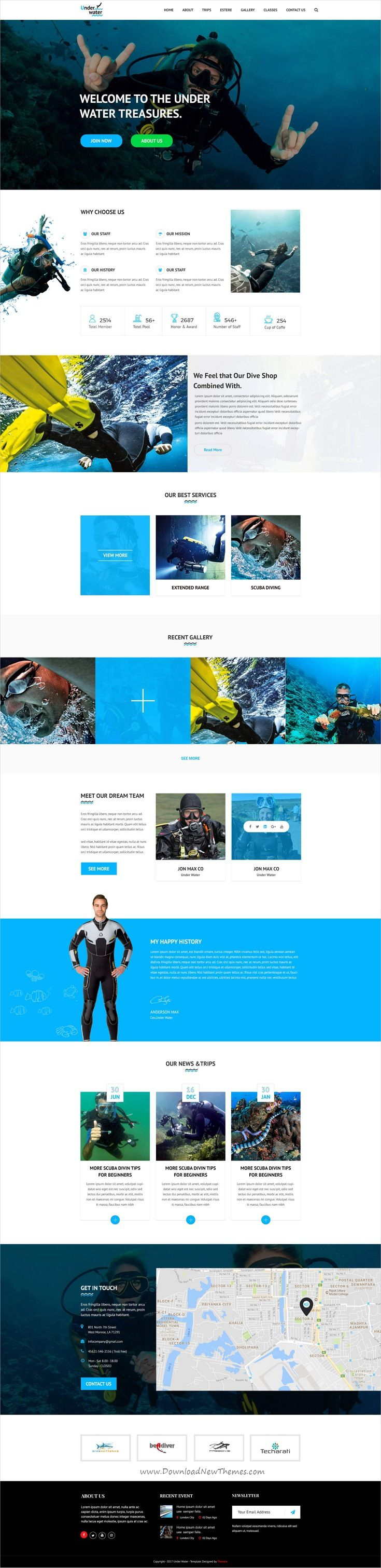 Professional clean and modern design #PSD template for onepage #underwarter treasures #website to live preview & download click on Visit