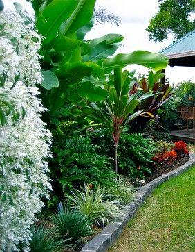 Wynnum tropical-landscape