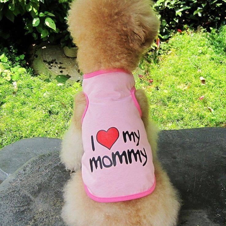 Best Friends World - I Love Mommy Dog Tee, €10.00 (http://www.bestfriendsworld.ie/i-love-mommy-dog-tee/)