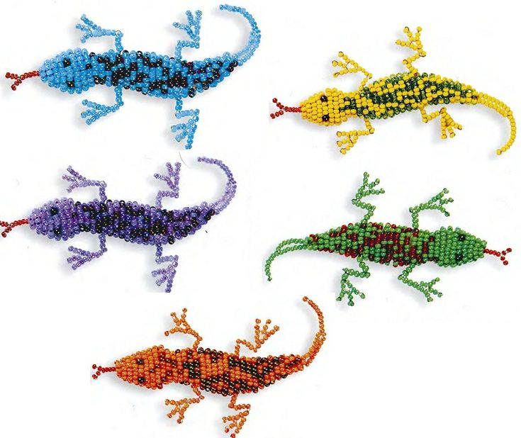 Lizards, lizards. / Animals and Birds / Biserok.org