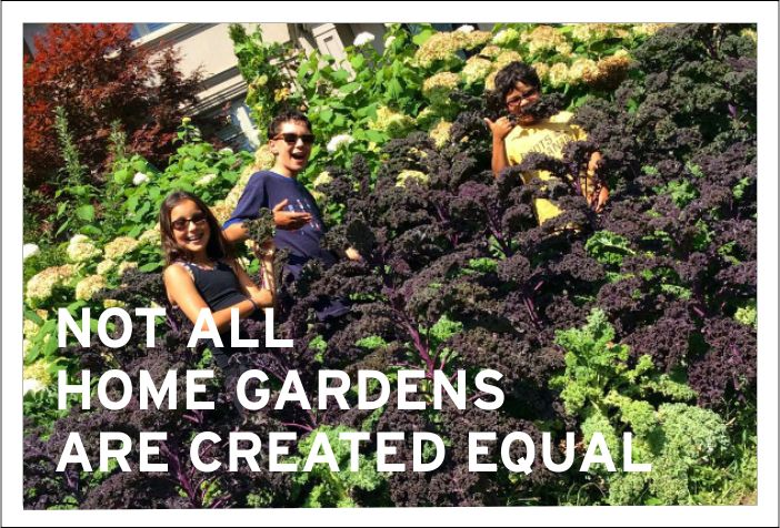 Not all home gardens are created equal.Unfortunately, even when we grow our own food there are things we need to look out for!