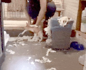 You Made This Mess. You Will Clean It Up