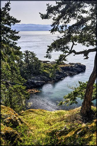 East Sooke Regional Park looking south across the Strait of Juan de Fuca to the Olympic Mountains in Washington State, Vancouver Island, British Columbia, Canada