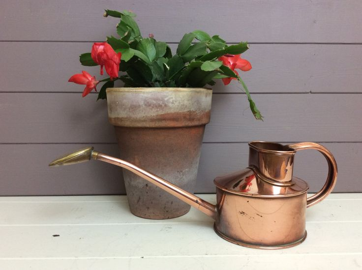 Haws copper watering can haws genuine copper and brass - Haws copper watering can ...