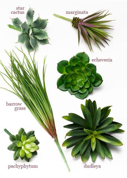 Artificial Succulent Picks