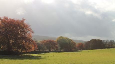 Beautiful autumn colours across the Malham Tarn Nature Reserve