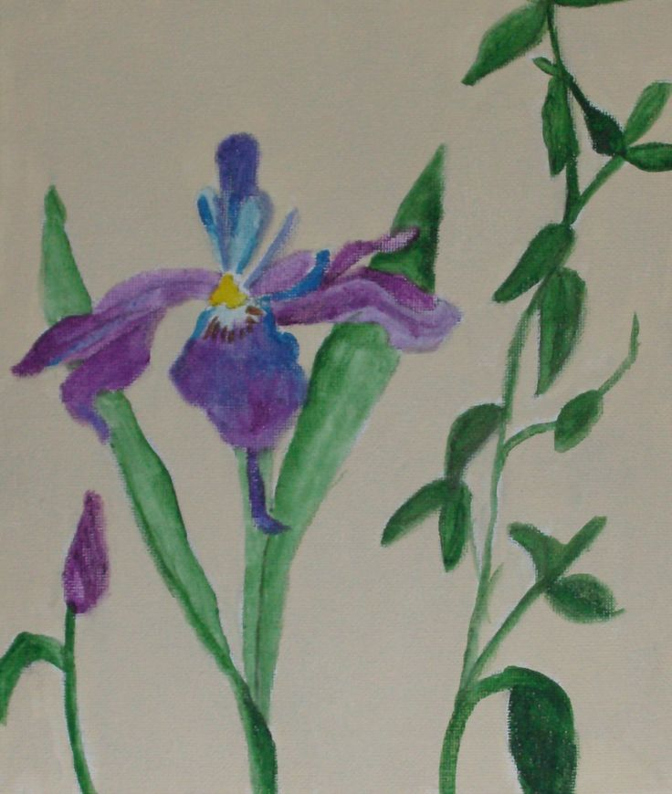 Yearning to see an Iris in Spring