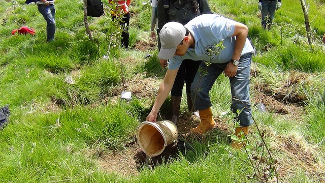 Pacific Rubiales sembró 300 árboles en la ronda del rio Bogotá