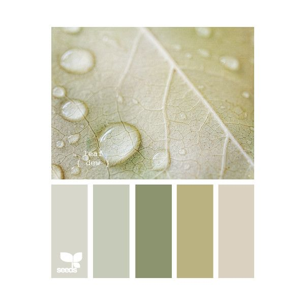 Design Seeds for all who color ❤ liked on Polyvore featuring backgrounds, design seeds, colors, color palette and designseeds