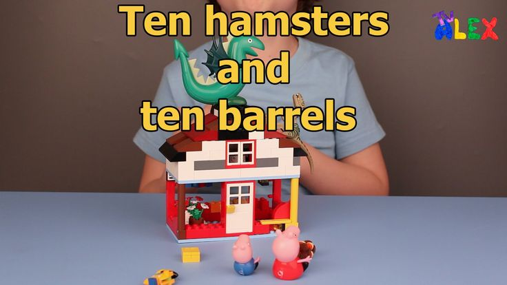 Ten hamsters and ten barrels. The new short story from Alex :)