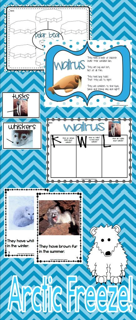 90+ page non-fiction ARCTIC FREEZE unit full of games, printables, vocabulary cards, writing activities, 6 emergent readers, poems, projects, and tons more. $
