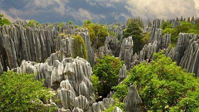V Kamenném lese Š´lin se střídají šedivé bloky skal se zelení bambusových porostů.